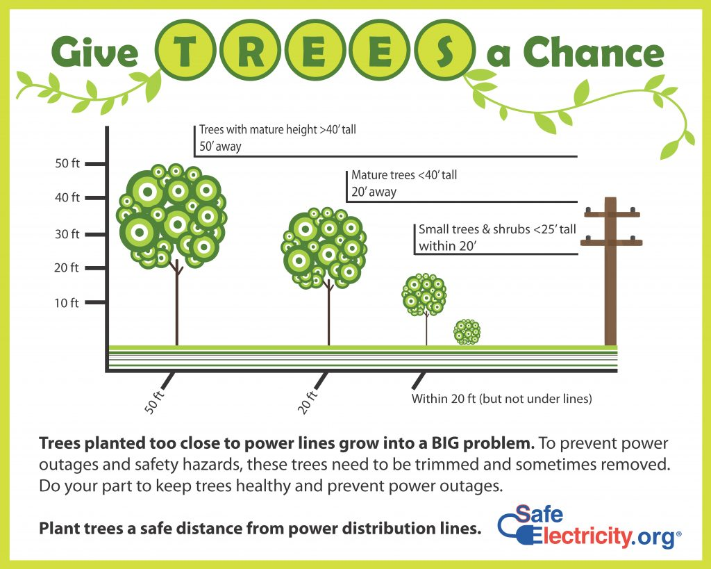 Tree Planting Graphic