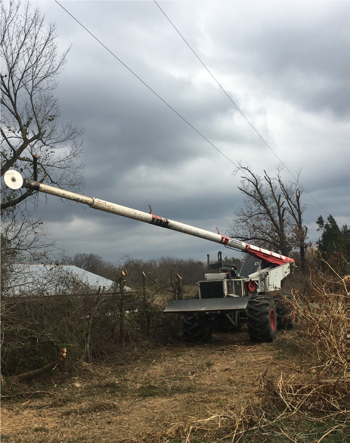 Utility workers operate a Skytrim, which makes it easier to remove tree limbs and other vegetation in hard-to-reach areas.